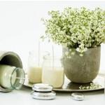 Les Bougies Naturelles : Pourquoi les choisir au lieu d'une bougie classique ?