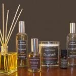 Parfums d'ambiance : Nocif ou pas ?