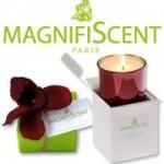 Pourquoi les bougies parfumées de marque sont-elles si chères ?
