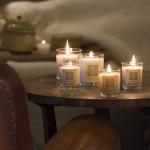 Bougies Parfumées Nature – Ambiance des Alpes